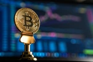 Who Should Invest in Bitcoin